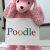 Google descubre a Poodle, una peligrosa vulnerabilidad en el protocolo SSL